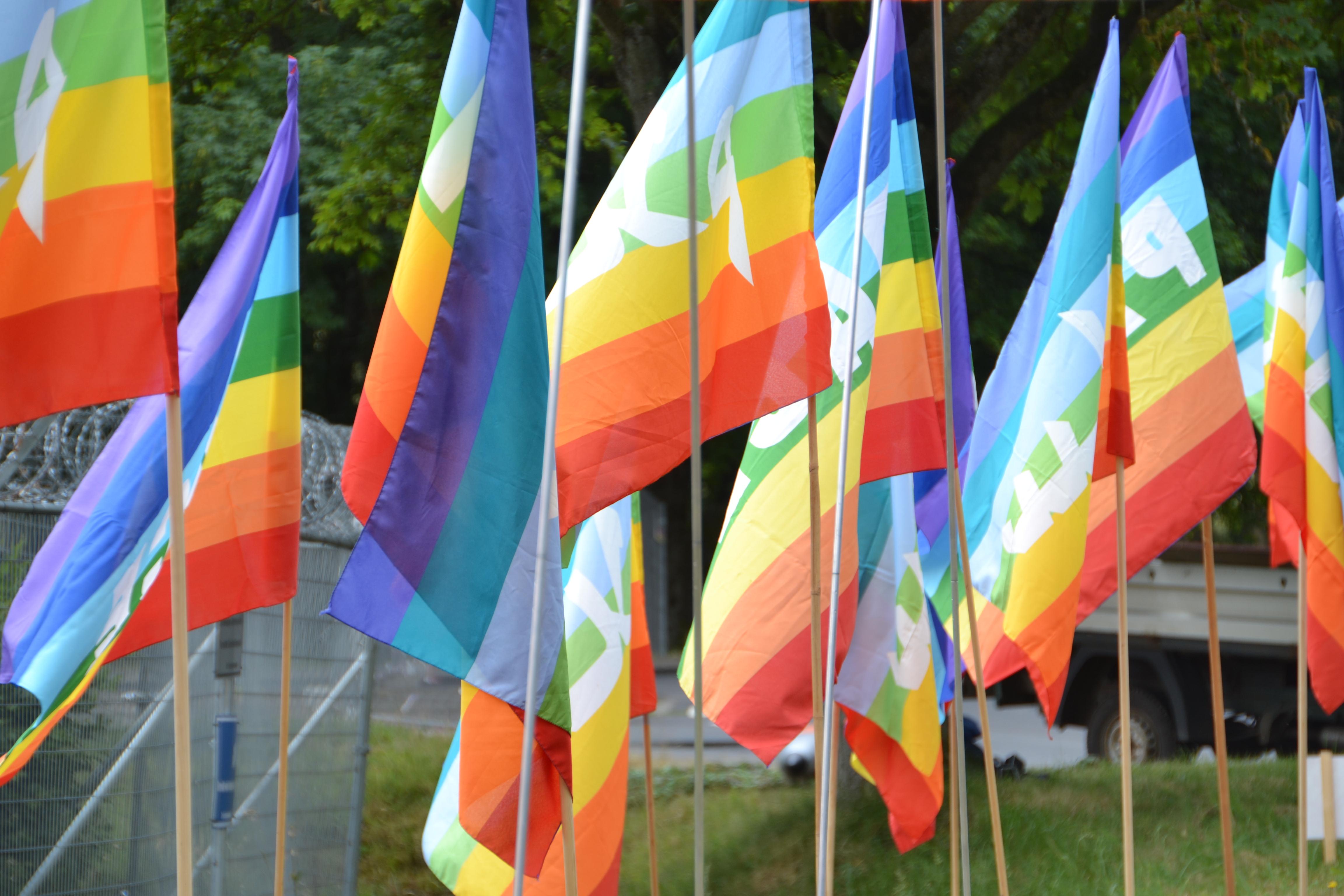 Mehrere regenbogenfarbig leuchtende Friedensflaggen, die an langen, in eine Wiese gebohrten Stöcken hängen. Im Hintergrund ein Maschendrahtzaun mit einer Rolle NATO-Stacheldraht und dunkelgrüner Wald.